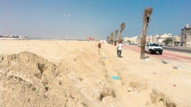 صورة إنشاء شاطئ بتاروت بطول كيلومتر