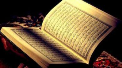 صورة أشبال صفوى يحققون درجة ١٠٠٪ في قياس حفظ القرآن