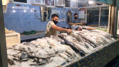 صورة باعة السمك: (الجو ضو، والأسعار ضو) ونعذر المشتري