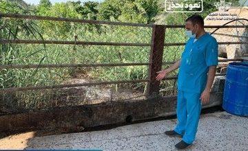 صورة بلدية تاروت تفتش المزارع بحثاً عن المسالخ العشوائية