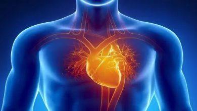 صورة استشاري قلب : إهمال مريض السكري ضغط الدم.. خطر