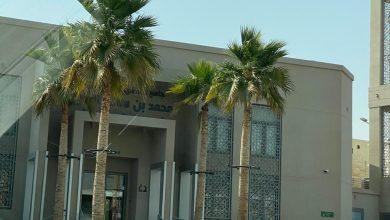 صورة دعوة من أجل أن تكون المساجد «صديقة للبيئة»