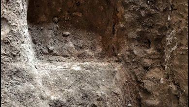 صورة مؤرخ: اكتشاف «تاروت» الأثري … «جندود»